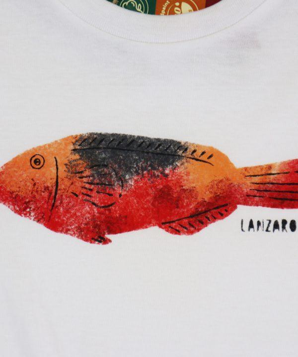 Danga vieja model. Hand painted Parrot fish